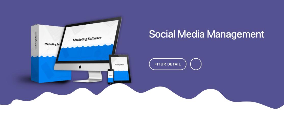 Apa Itu Social Media Management Bisnis Digital?